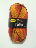 Tulip color 5206