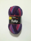 Tulip color 5203